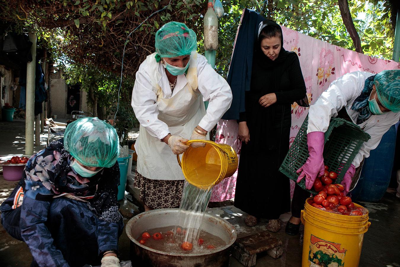 afghanistan-weat-photoslideshow-4-03052020.jpg