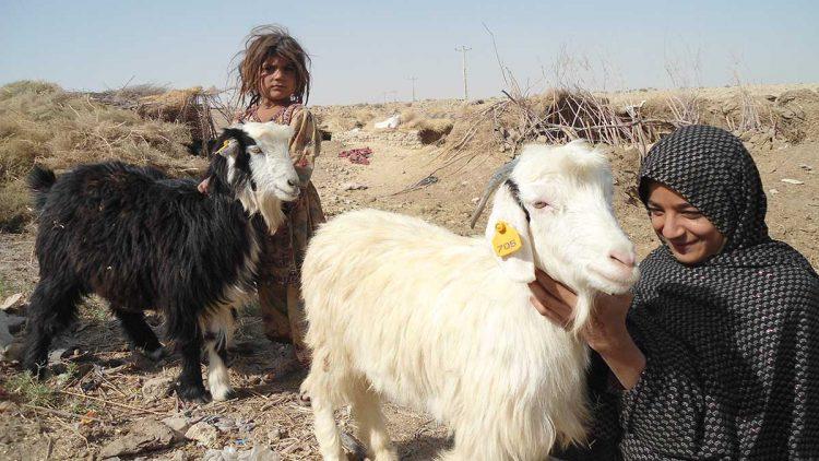 afghanistan-timeline-2011-28082019-e1567003110690-750x422.jpg