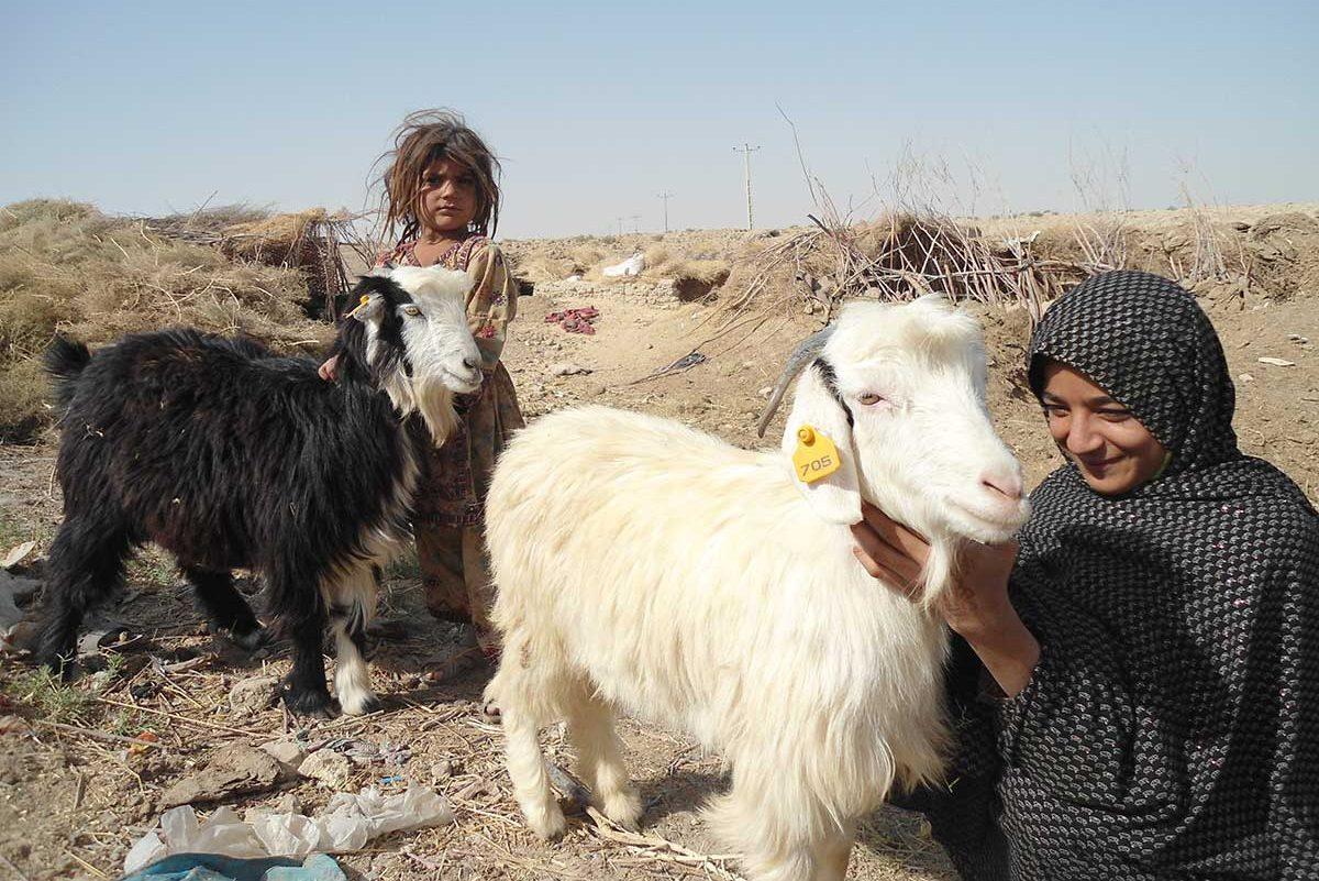 afghanistan-timeline-2011-28082019-e1567003110690.jpg