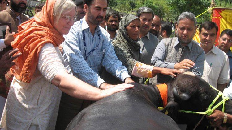 pakistan-timeline-2006-06092019-e1567790928499-750x422.jpg